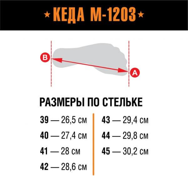 Берцы Кеда М-1203