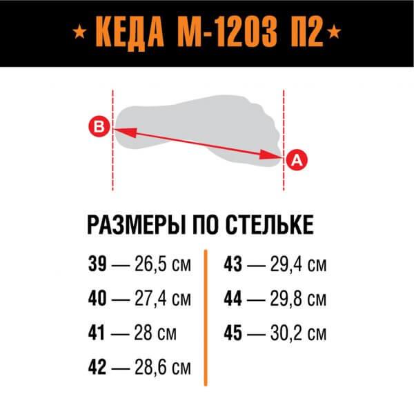 Берцы Кеда М-1203 П2